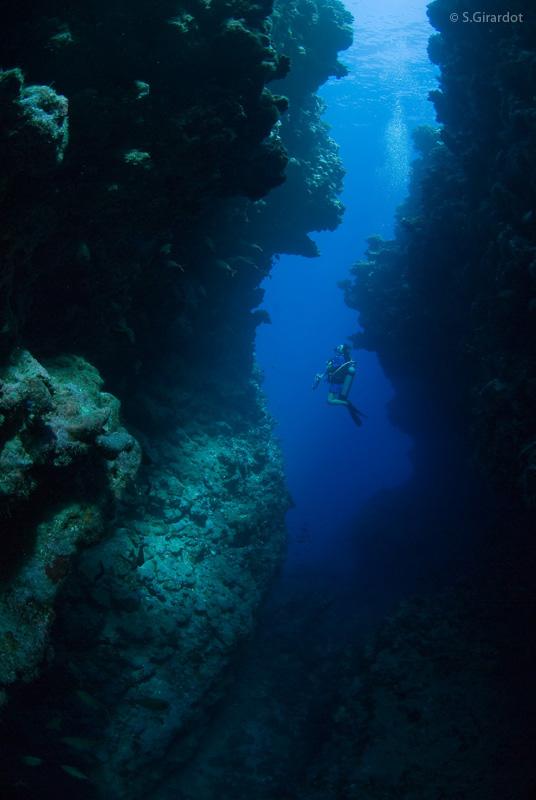 Scuba diving in tahiti topdivetopdive - Porno dive video gratis ...